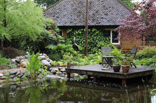 Photo of the pond and decking area